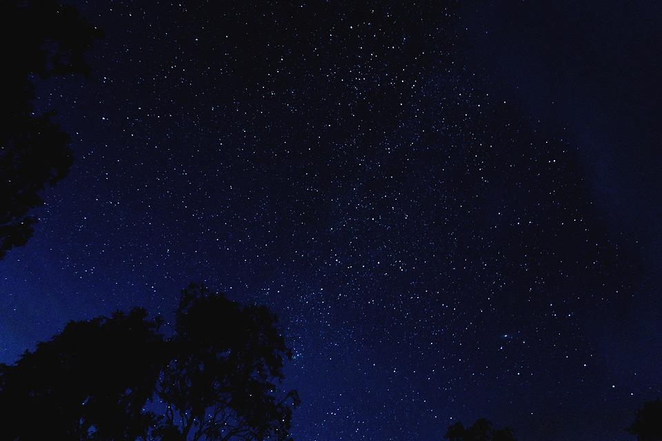 В создаваемом экопарке на берегу Темерника в Ростове появится амфитеатр и площадка для наблюдения за звездным небом