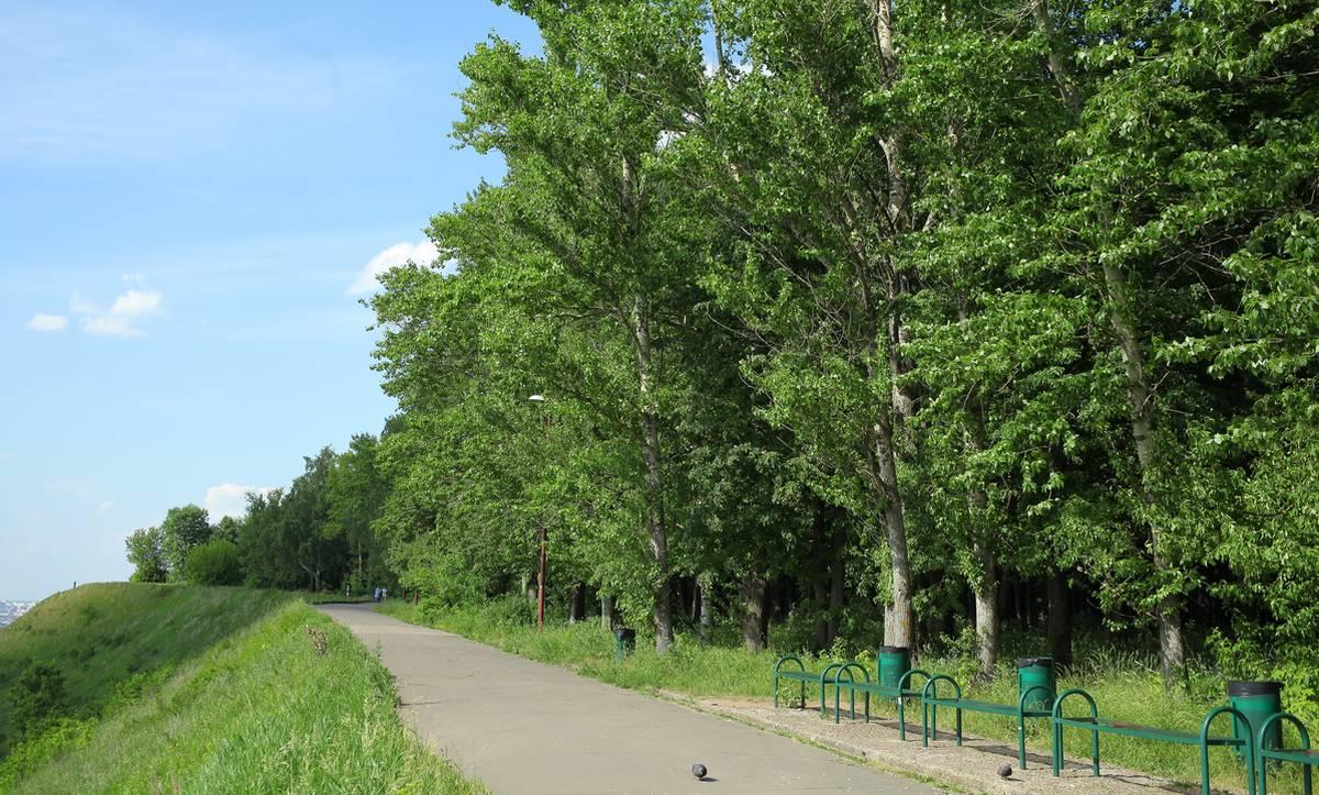 Нижний Новгород получит 210 млн рублей на проект благоустройства парка Швейцария  - фото 1